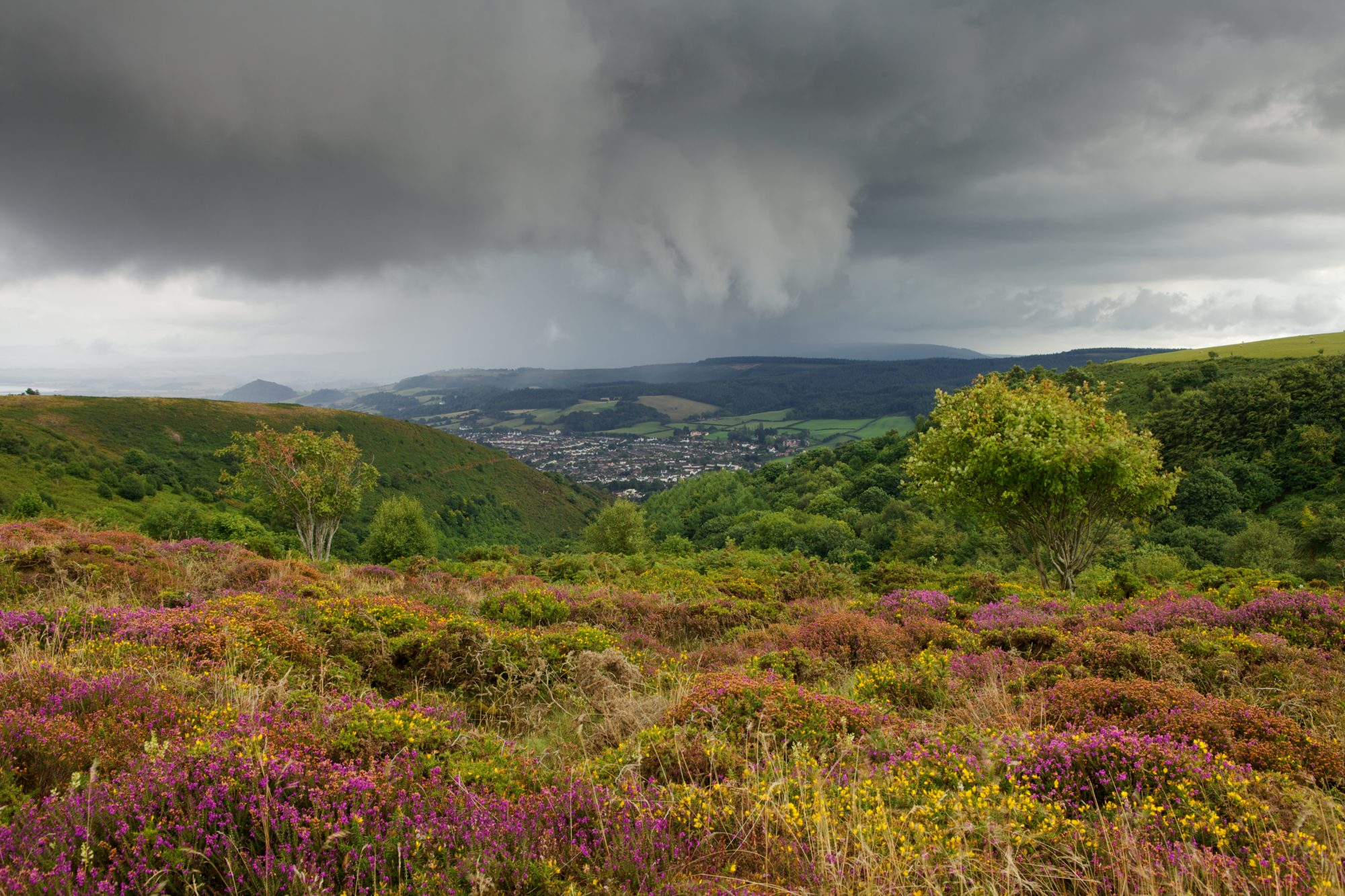 Exmoor National Park Places To Visit Exmoor